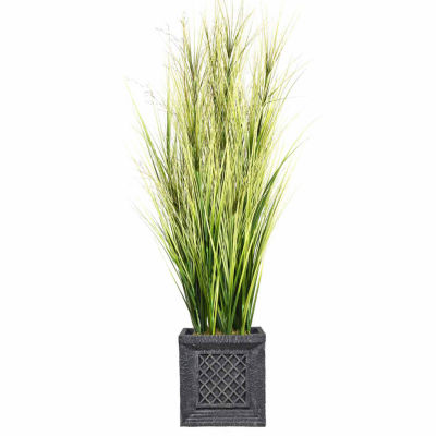 66 Inch Tall Onion Grass With Twigs In Planter