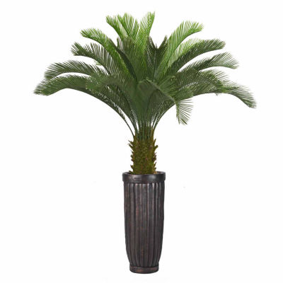 69 Inch Tall Cycas Palm Tree In Cylinder Planter