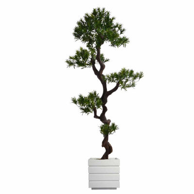 Laura Ashley 54 Inch Tall Yucca Tree In White Modern Planter