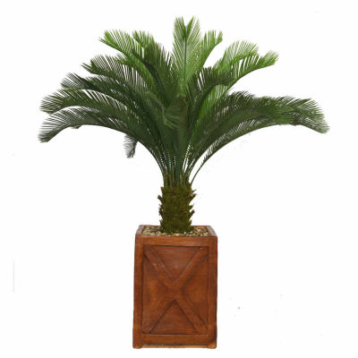 Laura Ashley 57 Inch Tall Cycas Palm Tree In 13 Inch Fiberstone Planter