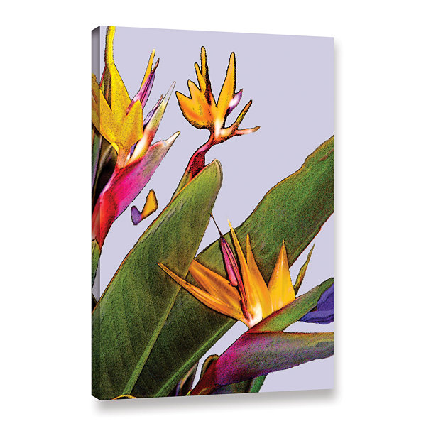 Brushstone Bird of Paradise Gallery Wrapped CanvasWall Art