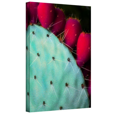 Brushstone Azul Cacto Gallery Wrapped Canvas WallArt