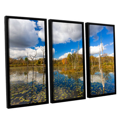 Brushstone Beaver Marsh 3-pc. Floater Framed Canvas Wall Art