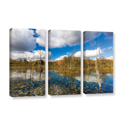 Brushstone Beaver Marsh 3-pc. Gallery Wrapped Canvas Wall Art
