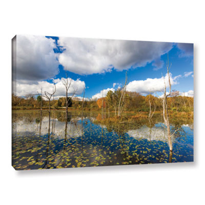 Brushstone Beaver Marsh Gallery Wrapped Canvas Wall Art