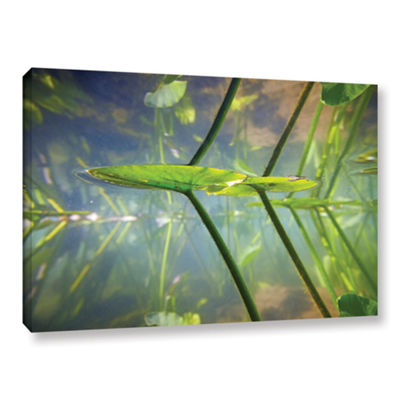 Brushstone Beaver Pond #1 Gallery Wrapped Canvas Wall Art