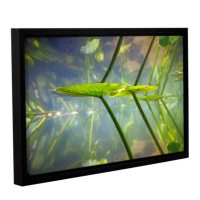 Brushstone Beaver Pond #1 Gallery Wrapped Floater-Framed Canvas Wall Art