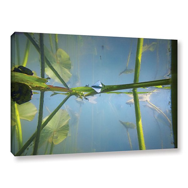 Brushstone Beaver Pond #2 Gallery Wrapped Canvas Wall Art