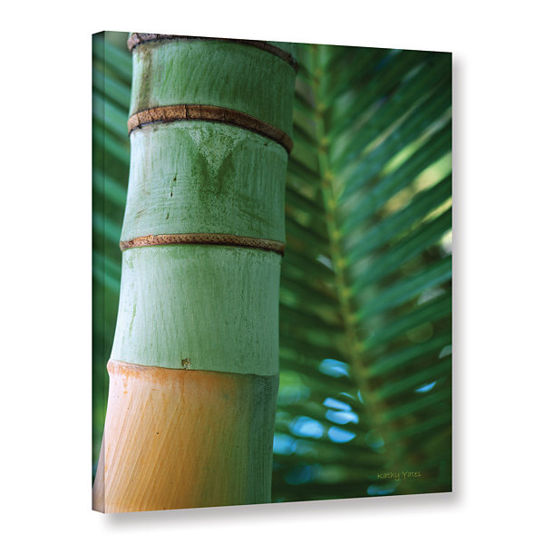Brushstone Bamboo and Fern Gallery Wrapped CanvasWall Art