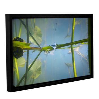 Brushstone Beaver Pond #2 Gallery Wrapped Floater-Framed Canvas Wall Art
