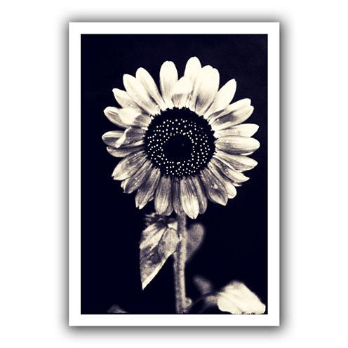 Brushstone Black and White Sunflower Canvas Wall Art