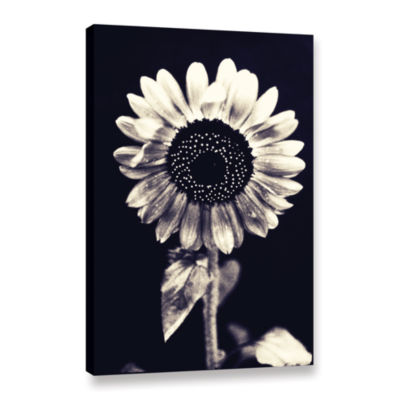 Brushstone Black and White Sunflower Gallery Wrapped Canvas Wall Art