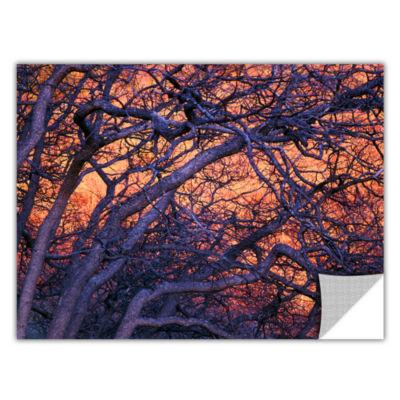 Brushstone Black Oak Sunset Removable Wall Decal