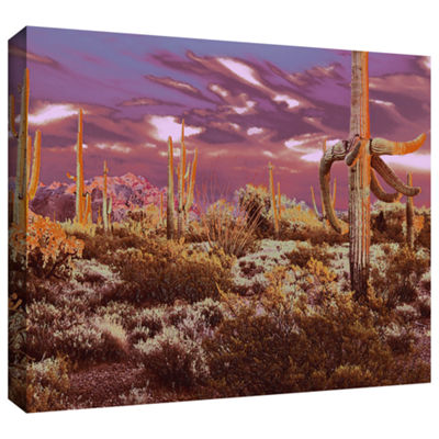 Brushstone Before Borders Gallery Wrapped Canvas Wall Art