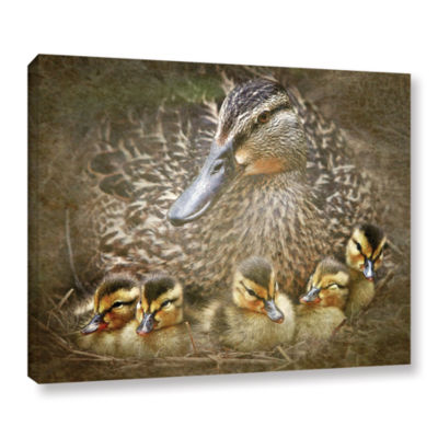 Brushstone Baby Ducks Gallery Wrapped Canvas WallArt