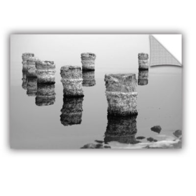 Brushstone Zed Black And White Removable Wall Decal