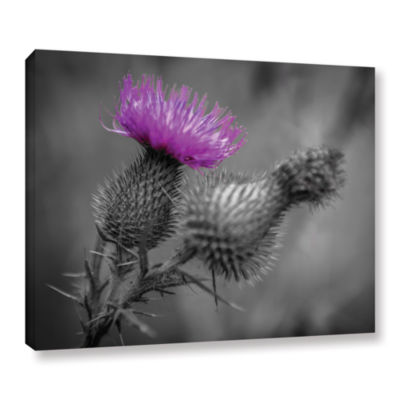 Brushstone Scotland Calls 1 Gallery Wrapped CanvasWall Art