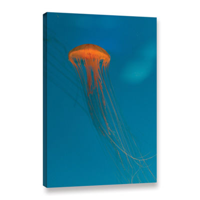 Brushstone Glowing Orange Sea Nettle Gallery Wrapped Canvas Wall Art