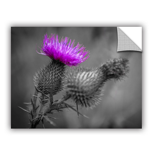 Brushstone Scotland Calls 1 Removable Wall Decal