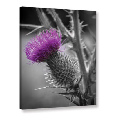 Brushstone Scotland Calls 2 Gallery Wrapped CanvasWall Art