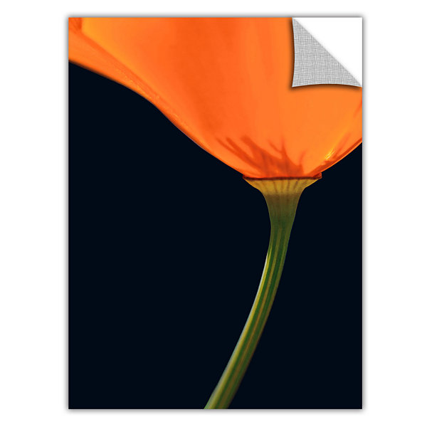Brushstone Pauma Valley Poppy Removable Wall Decal