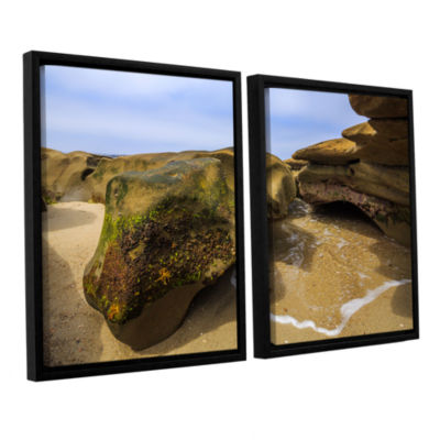 Brushstone Lizard Rock At Rest 2-pc. Floater Framed Canvas Wall Art