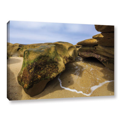 Brushstone Lizard Rock At Rest Gallery Wrapped Canvas Wall Art
