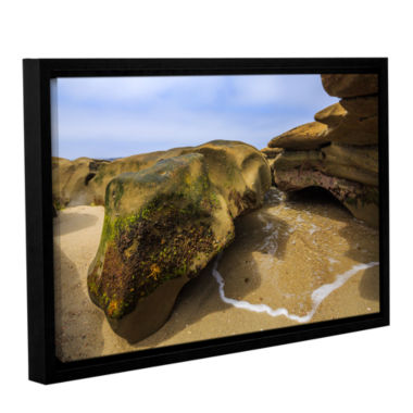 Brushstone Lizard Rock At Rest Gallery Wrapped Floater-Framed Canvas Wall Art