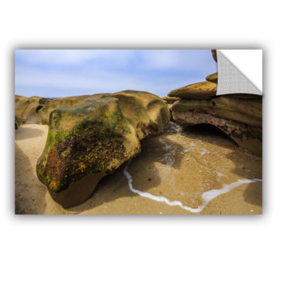 Brushstone Lizard Rock At Rest Removable Wall Decal