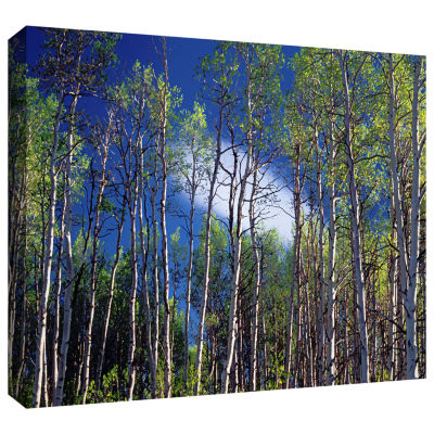 Brushstone Lone Cloud Gallery Wrapped Canvas WallArt
