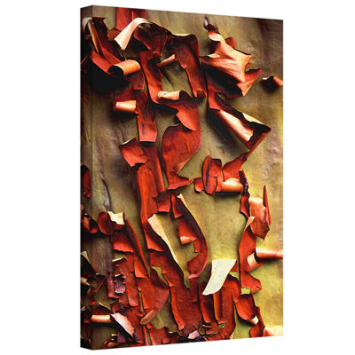 Brushstone Madrone Bark Detail Gallery Wrapped Canvas Wall Art