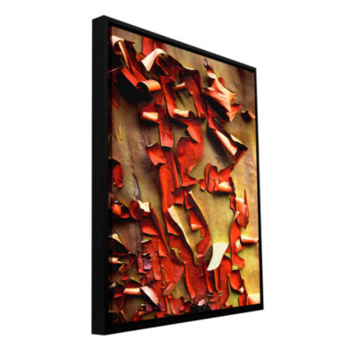 Brushstone Madrone Bark Detail Gallery Wrapped Floater-Framed Canvas Wall Art