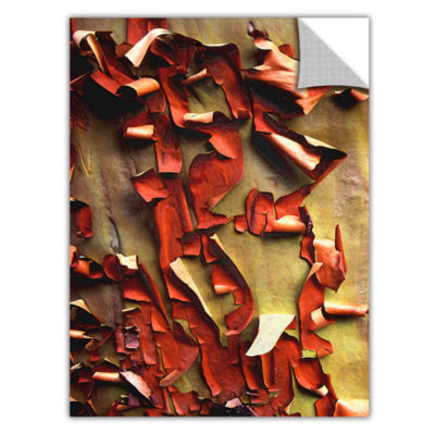 Brushstone Madrone Bark Detail Removable Wall Decal