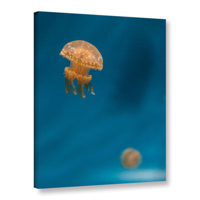 Brushstone Hovering Spotted Jelly 3 Gallery Wrapped Canvas Wall Art