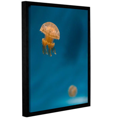 Brushstone Hovering Spotted Jelly 3 Gallery Wrapped Floater-Framed Canvas Wall Art