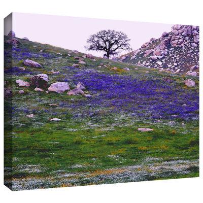 Brushstone Sierra Foothills Spring Gallery WrappedCanvas Wall Art