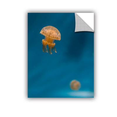 Brushstone Hovering Spotted Jelly 3 Removable WallDecal