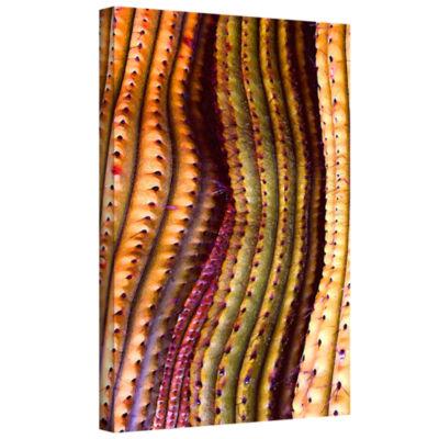 Brushstone Tubos Trenzado Gallery Wrapped Canvas Wall Art