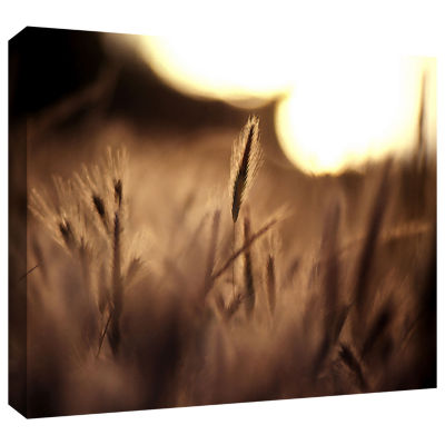 Brushstone Summer Field Gallery Wrapped Canvas Wall Art