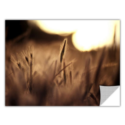 Brushstone Summer Field Removable Wall Decal