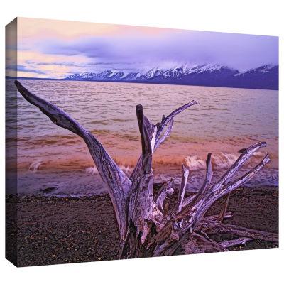 Brushstone Grand Tetons Storm Light Gallery Wrapped Canvas Wall Art
