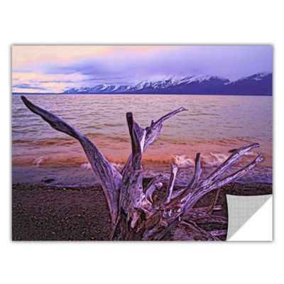 Brushstone Grand Tetons Storm Light Removable WallDecal