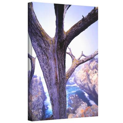 Brushstone Morning Fog And Cypress Gallery WrappedCanvas Wall Art