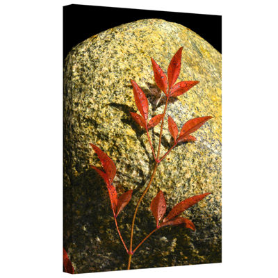 Brushstone Natural World 15 Gallery Wrapped CanvasWall Art