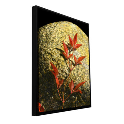 Brushstone Natural World 15 Gallery Wrapped Floater-Framed Canvas Wall Art