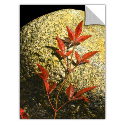 Brushstone Natural World 15 Removable Wall Decal