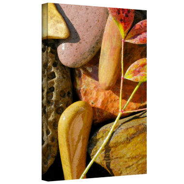 Brushstone Natural World 20 Gallery Wrapped CanvasWall Art