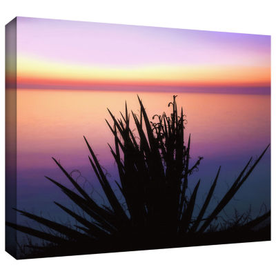 Brushstone Pacific Cliff Yucca Gallery Wrapped Canvas Wall Art