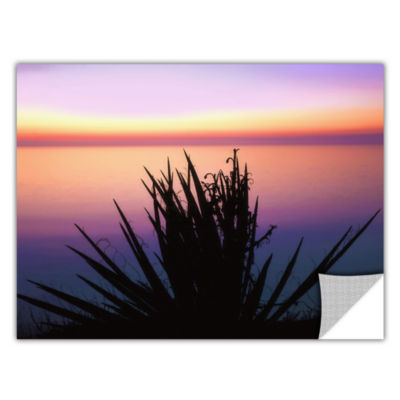 Brushstone Pacific Cliff Yucca Removable Wall Decal