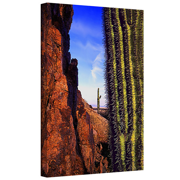Brushstone Painted Rocks Arizona Gallery Wrapped Canvas Wall Art